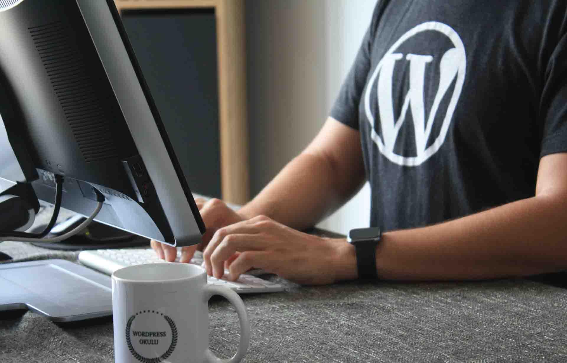 realizzazione siti wordpress roma 2